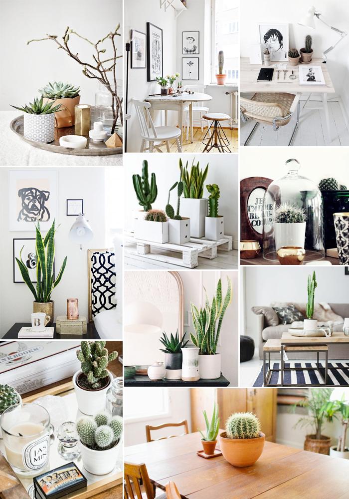 Monday Moodboard: Interieur met cactussen - Follow Fashion