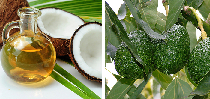 Avocado vs kokos: Wat is beter?