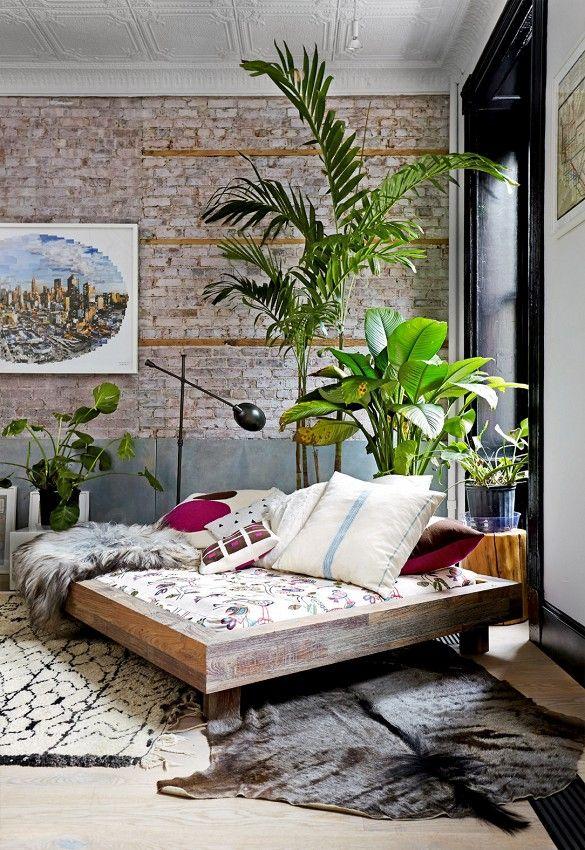 planten in huis 1