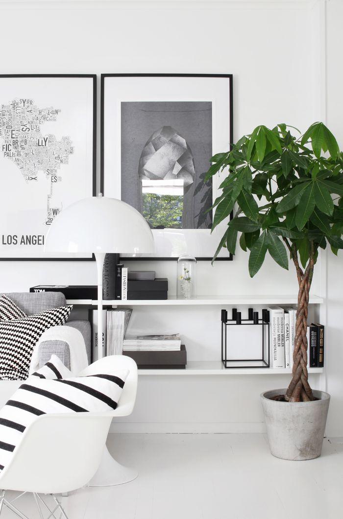 Interieurinspiratie: Planten in huis - Follow Fashion
