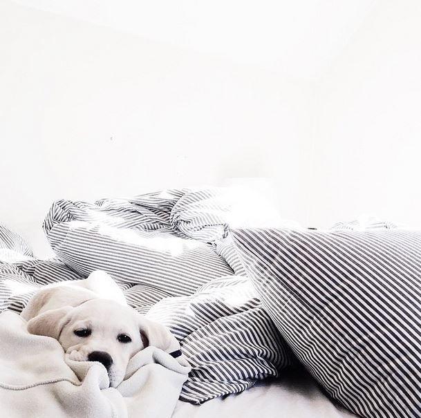 een gezellige slaapkamer creer je dus als zelf snel door een paar kleine veranderingen toe te passen