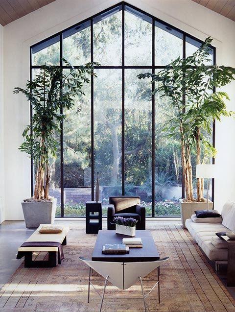 bomen-in-huis-4