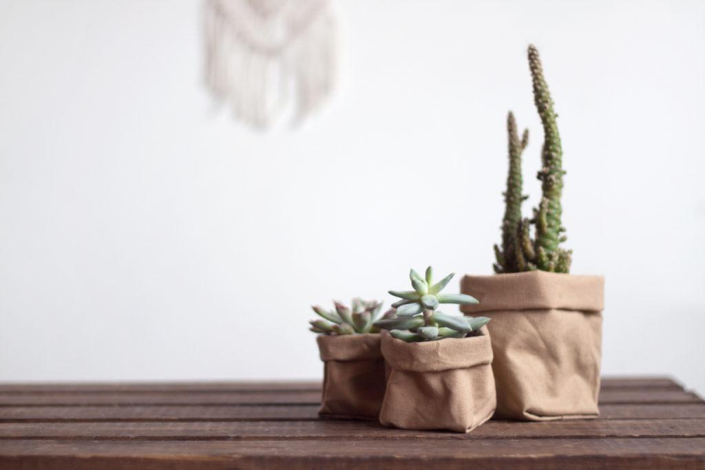 DIY plantenzak maken