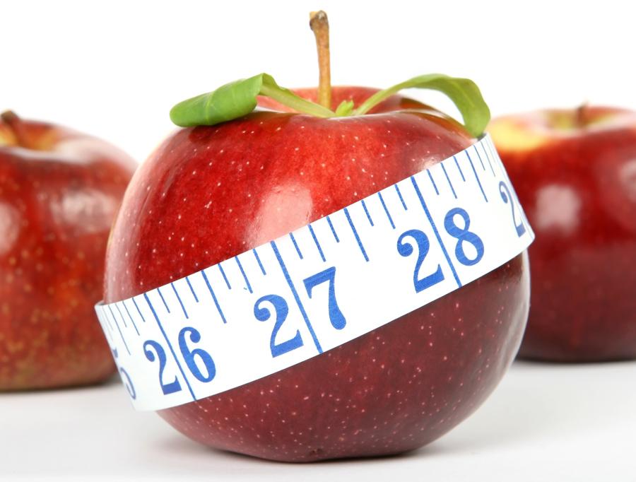 fitjournaal gezond gewicht