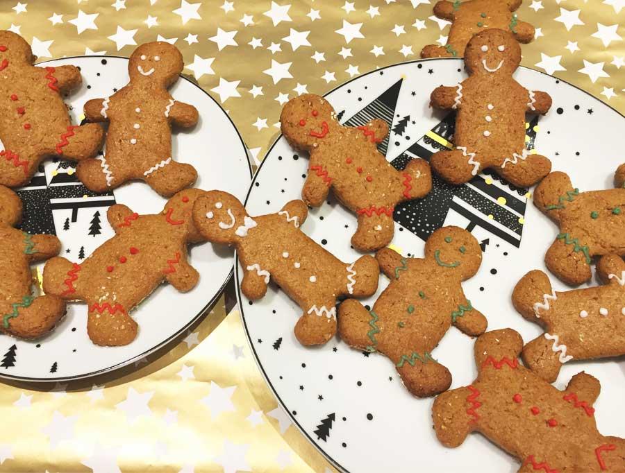 fitjournaal gingerbread