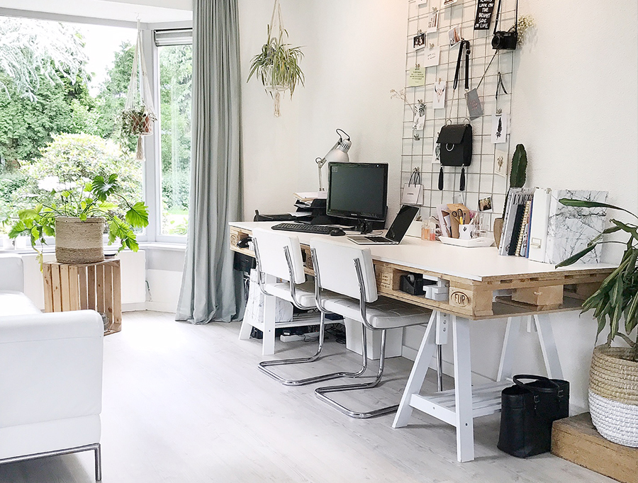 kamerplanten interieur