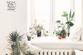 6 X Tips voor meer licht in huis