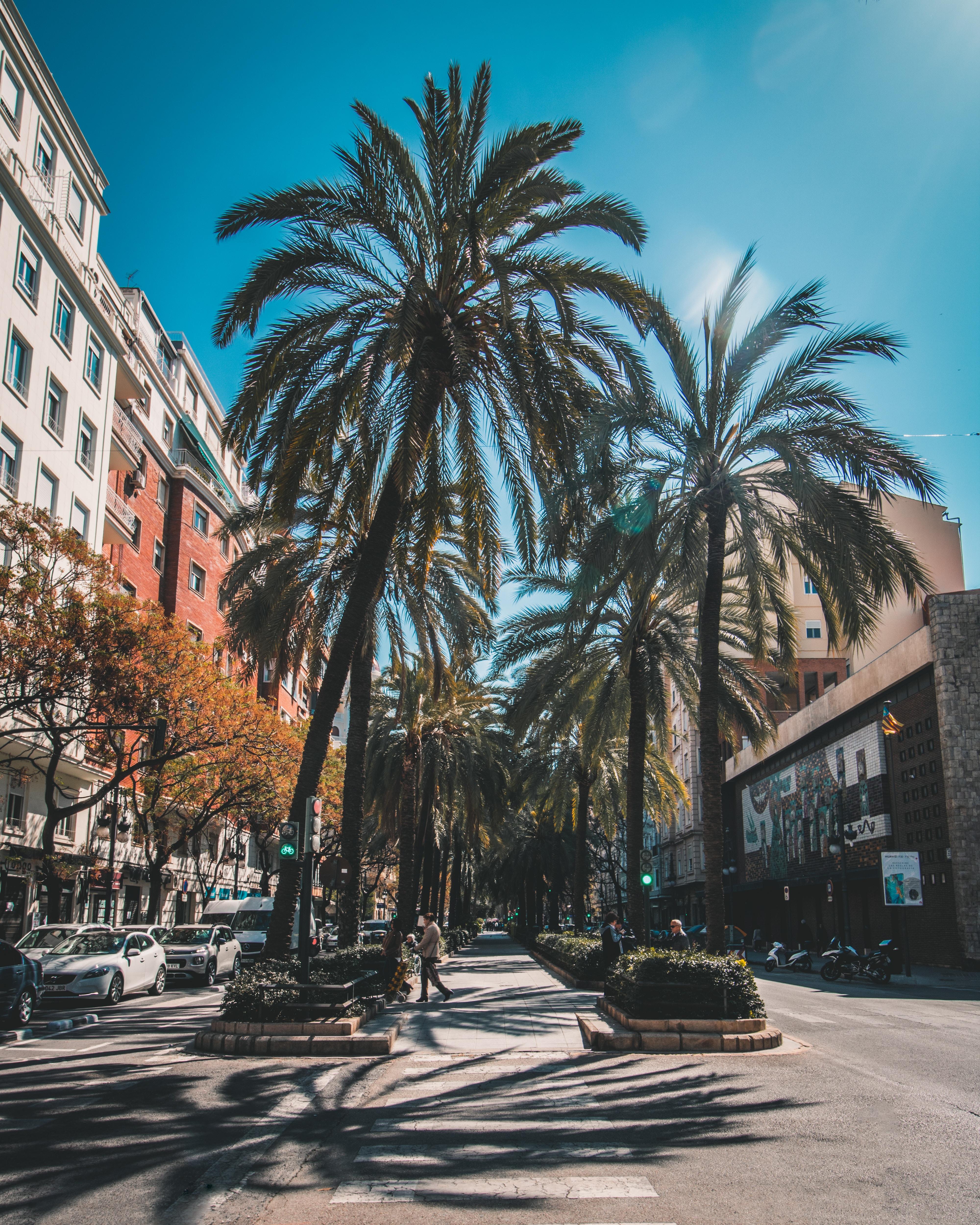 zonvakanties in Europa Valencia