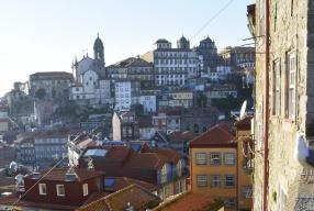 5 x healthy hotspots in Porto